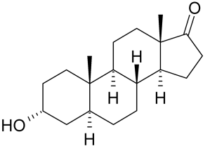 1200px-Androsterone